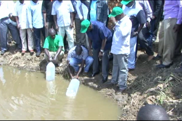 Releasing fish fingerlings into a new pond in Kenya